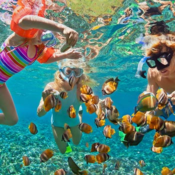 Snorkle Cabo Pulumo