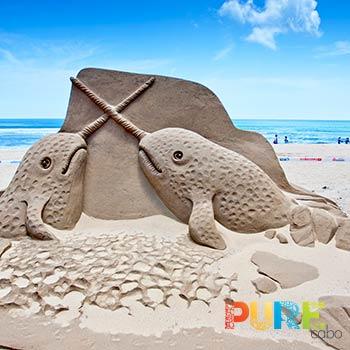 Cabo Sandcastle Builders