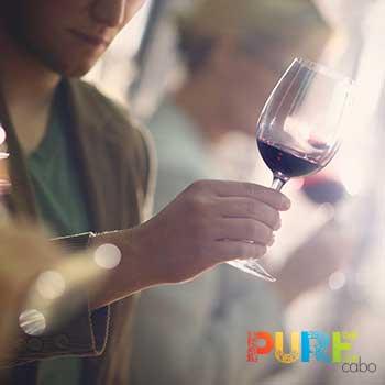 Cabo San Lucas Wine Tastings